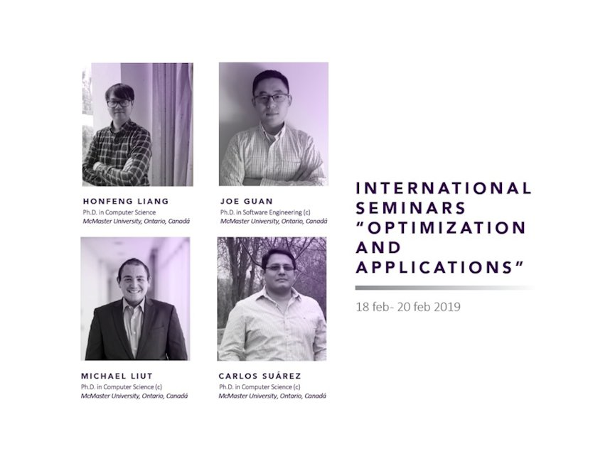 International Seminars: Optimization and Applications