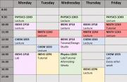 Typical Fall Term Timetable