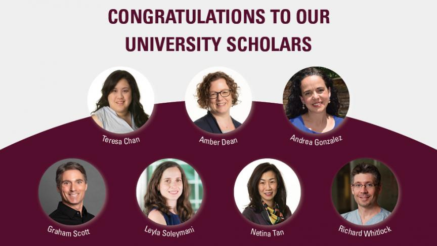 Seven McMaster researchers recognized as University Scholars